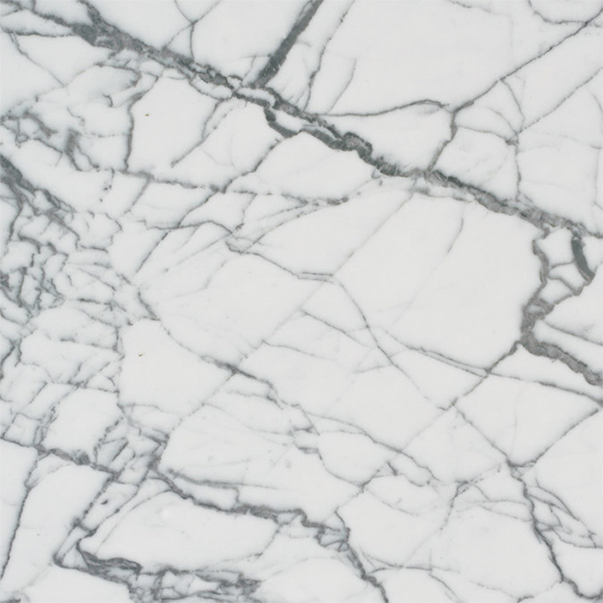 Marmo Bianco Carrara Venatino